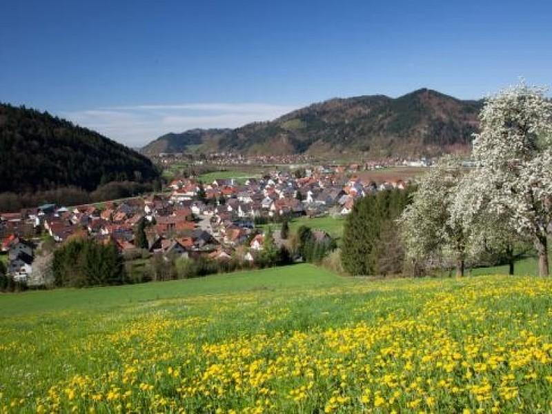 Gutach im Breisgau