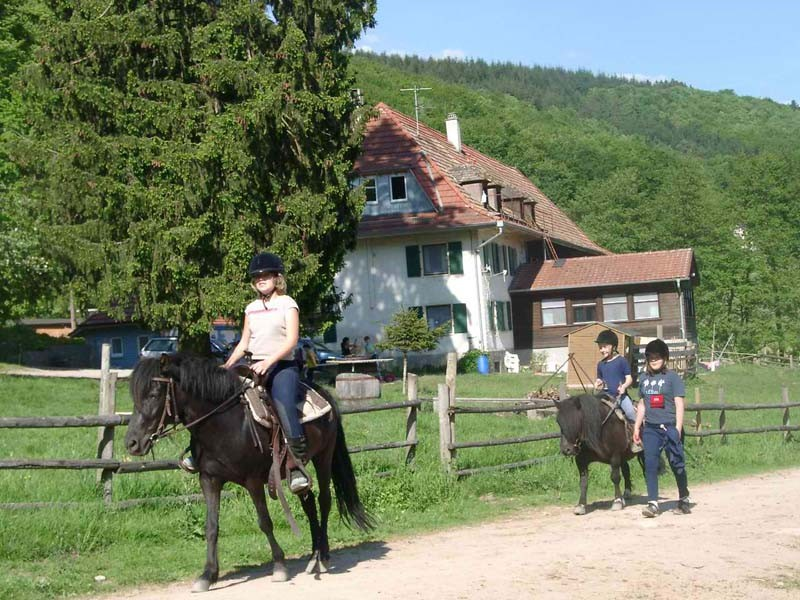 Familien- und Jugendherberge Platzhof mit Reiterhof