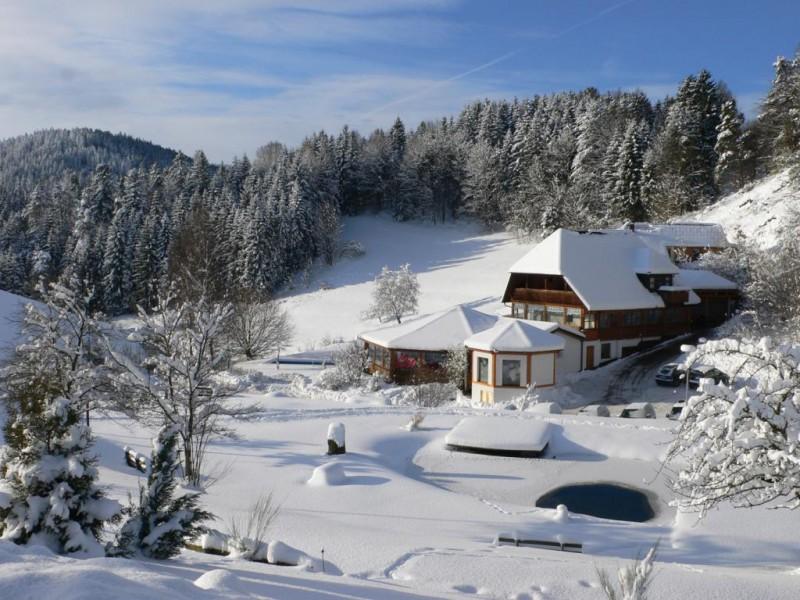 kaeppelehof-winter.jpg