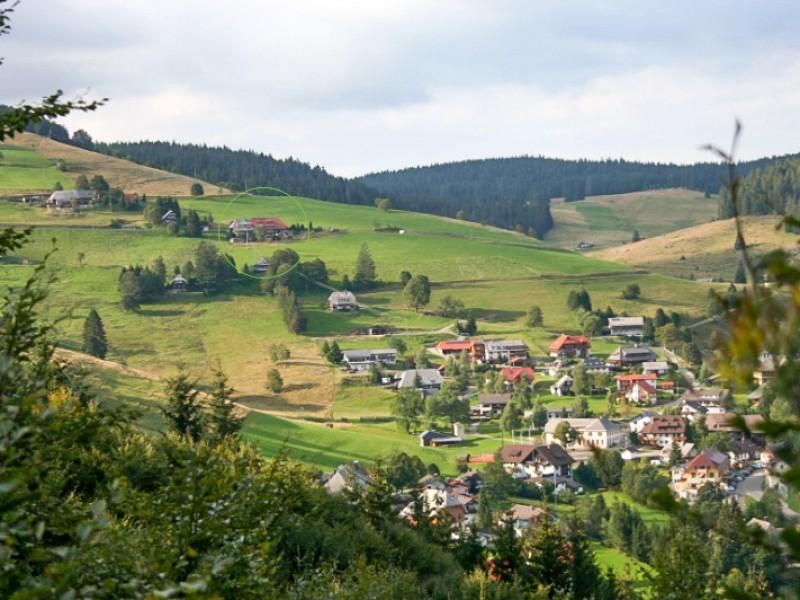 Ferienwohnung haus bergwiese todtnau im schwarzwald for Ferienwohnung im schwarzwald