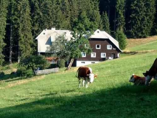 Ramselehof