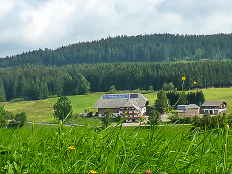 Stalterhof - Familie Wehrle