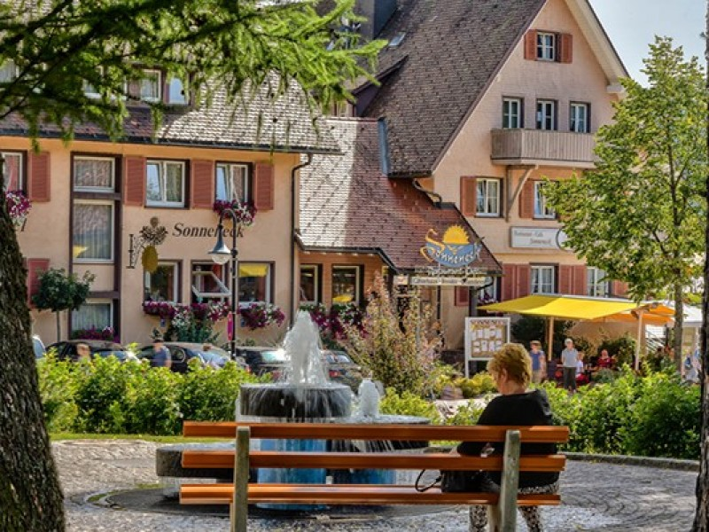 Hotel Sonneneck am Titisee