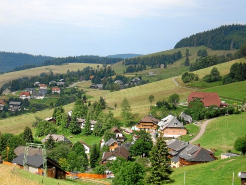 Bühlhof in Todtnauberg
