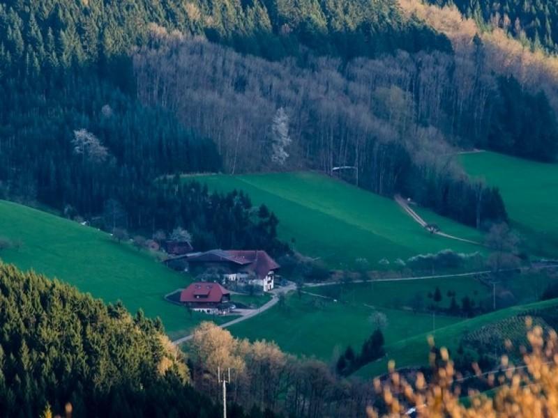 Geigerseppleshof