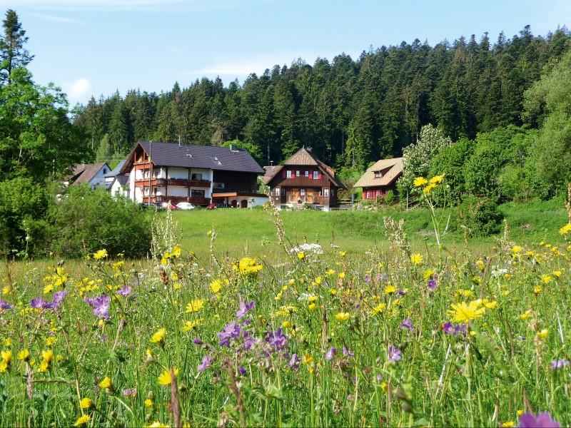 landhaus anja freudenstadt im schwarzwald ferienwohnungen ein kleines paradies. Black Bedroom Furniture Sets. Home Design Ideas
