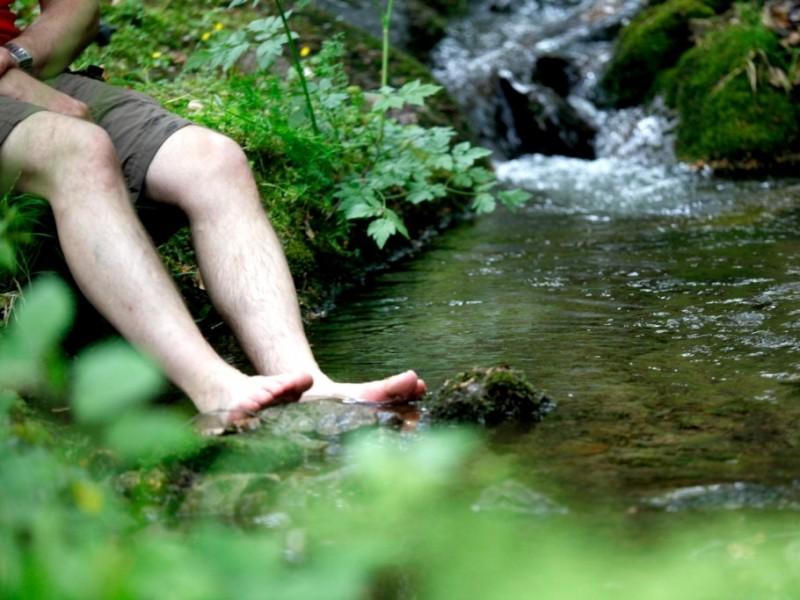 Paradies im Schwarzwald
