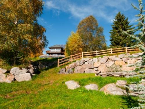 Ferienvilla am Feldberg