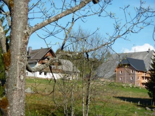 Farnbauernhof