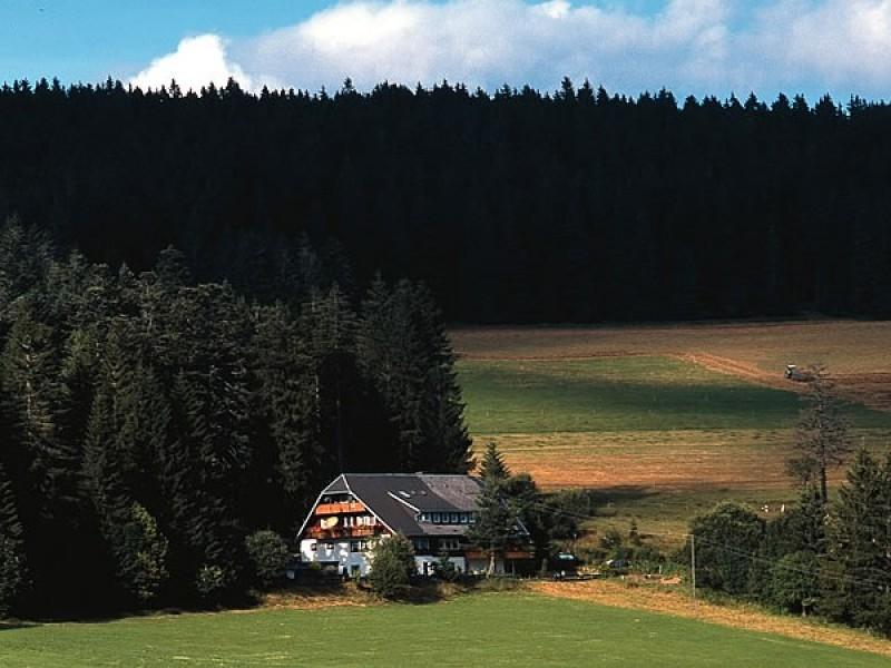Schwarzwaldgasthaus Salenhof
