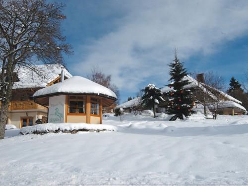 Roess-Pavillon-Wint-09.jpg